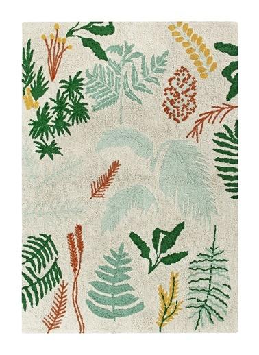 Botanic Plants Halı-Lorena Canals